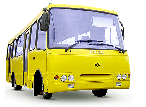 Выдача талонов для бесплатного проезда в городском транспорте