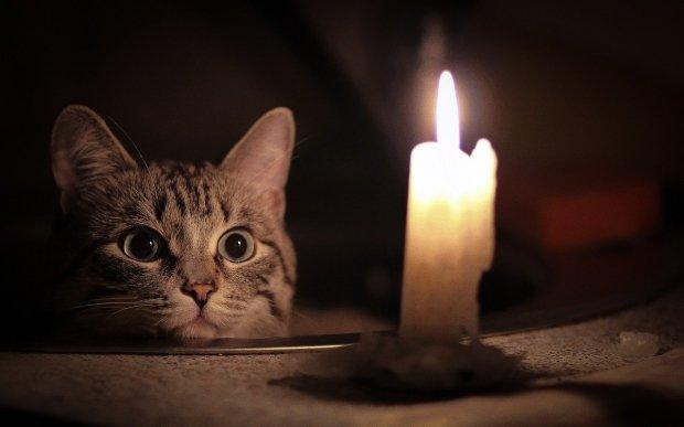 Увага! Протягом тижня в Ужгороді можливі відключення електроенергії