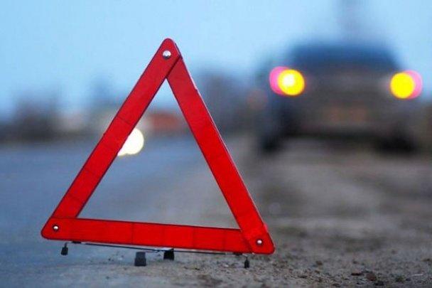 ДТП на Закарпатті: 4-річна дівчинка потрапила під колеса автобуса