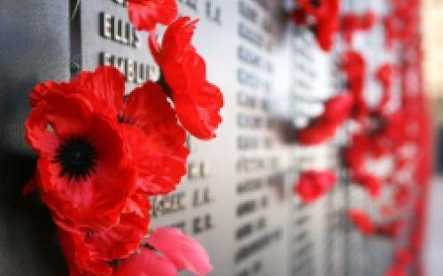 Хвилина тиші, святковий концерт та покладання квітів : ужгородці відзначать День пам'яті та примирення