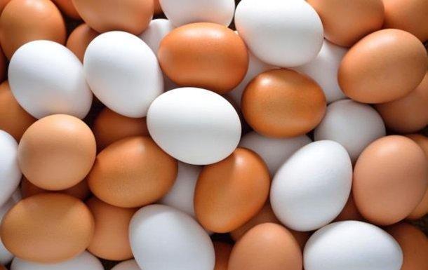"""Результат пошуку зображень за запитом """"яйця"""""""