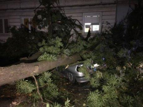 Ураган «Ксав'єр» обрушився наПольщу: є загиблі йпоранені