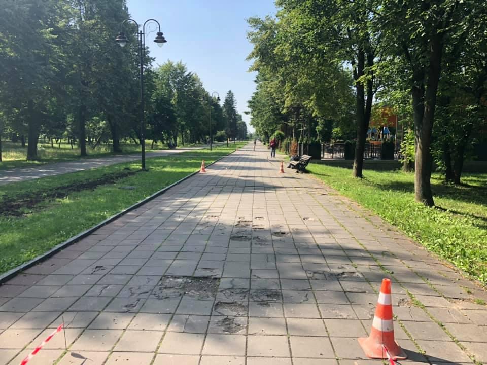 У луцькому парку ремонтують центральну алею
