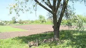 Волинянина, який зник 28 липня, знайшли повішеним