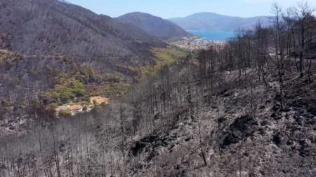 Ліси перетворилися на попіл: показали наслідки пожеж у Туреччині