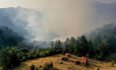У Туреччині біля курортного міста спалахнули лісові пожежі - volynfeed.com