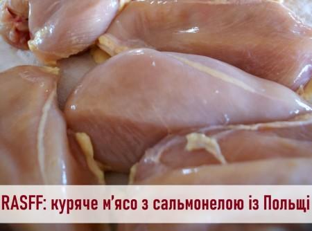 У польській курятині, що їхала до Луцька, виявили сальмонелу
