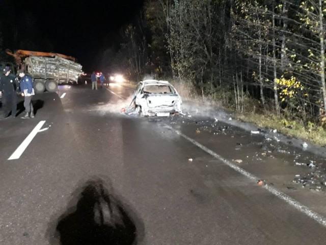 Смертельне ДТП: лісовоз зіткнувся з легковиком, фото-5