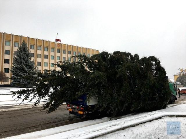 У місті на Волині зламалася новорічна ялинка (ФОТО, ВІДЕО), фото-1