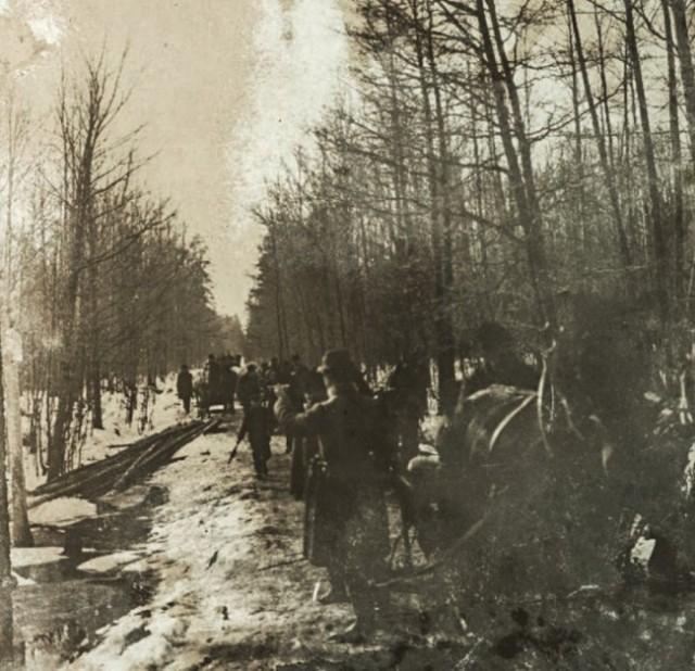 Полювання поблизу Олики, поч. ХХ ст.