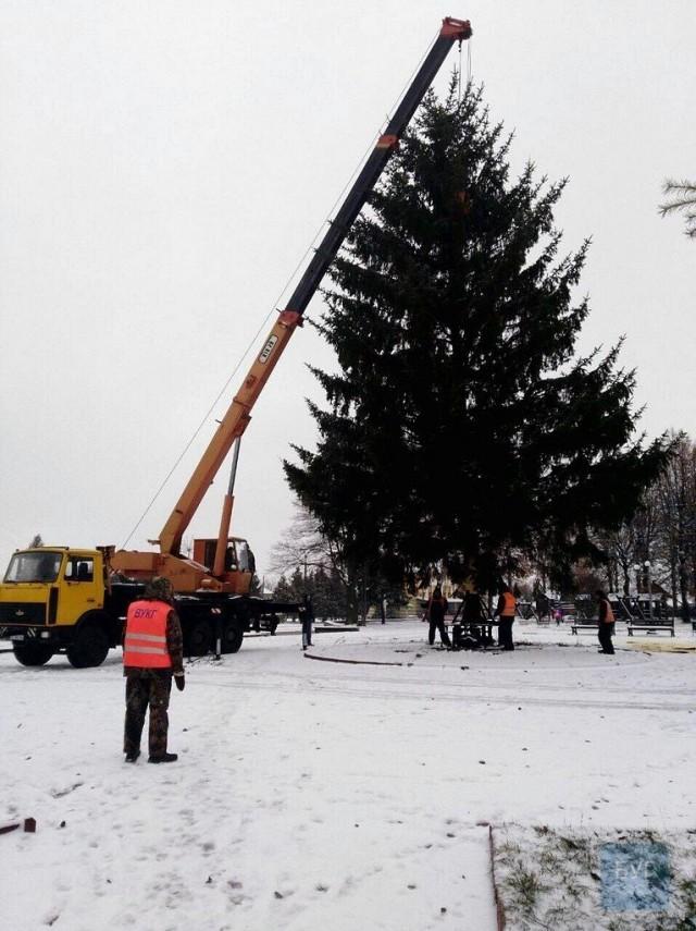 У місті на Волині зламалася новорічна ялинка (ФОТО, ВІДЕО), фото-2